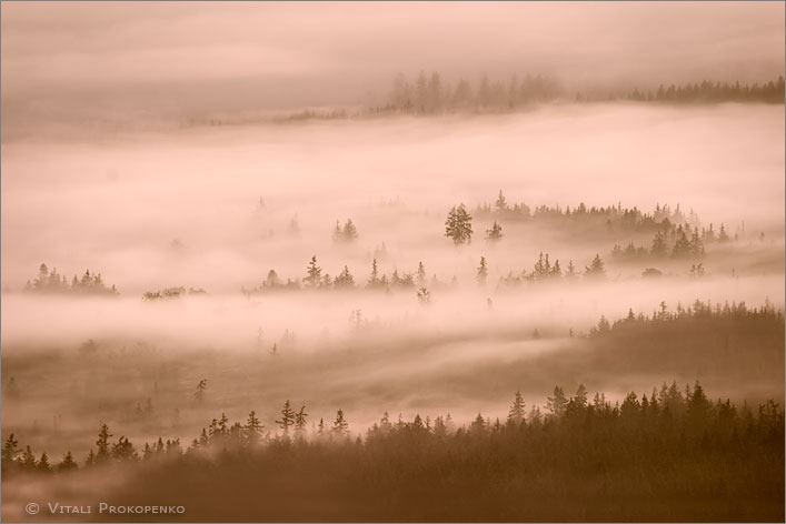Fog over Port Angeles