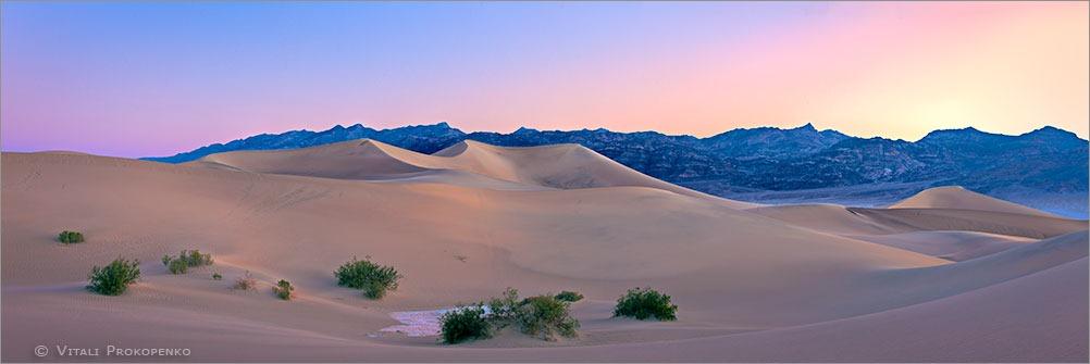 Morning in Dunes