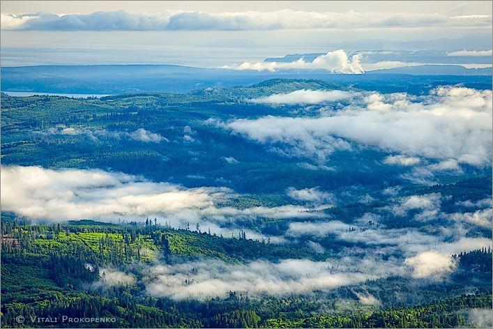 Fog Over Lowlands